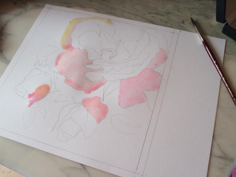 rosa gialla 3 bozza 1