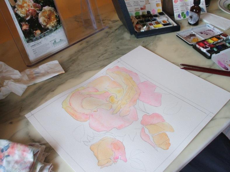 rosa gialla 3 bozza 2