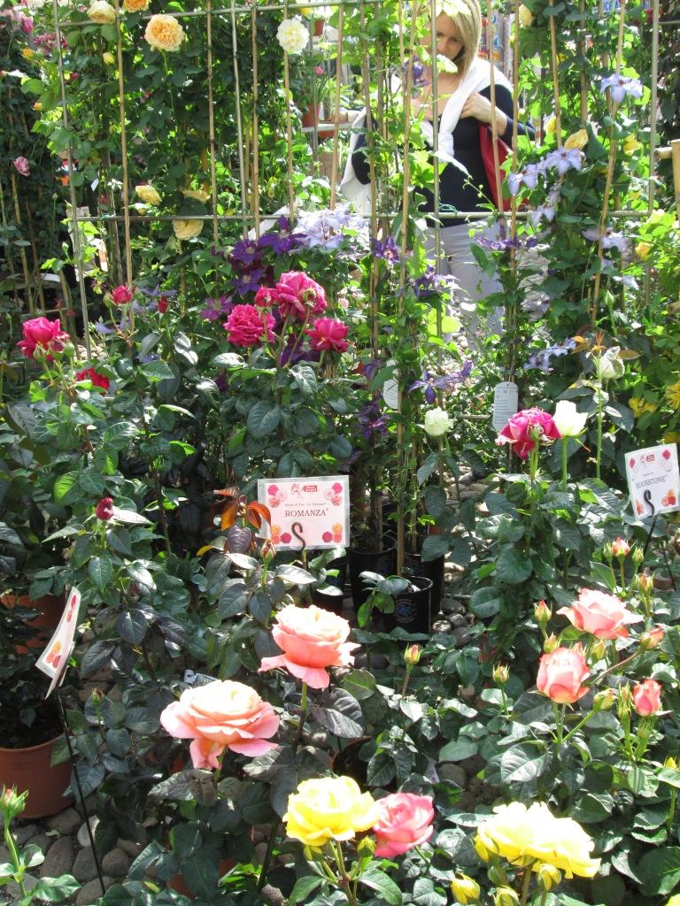 mercatino fiori 1