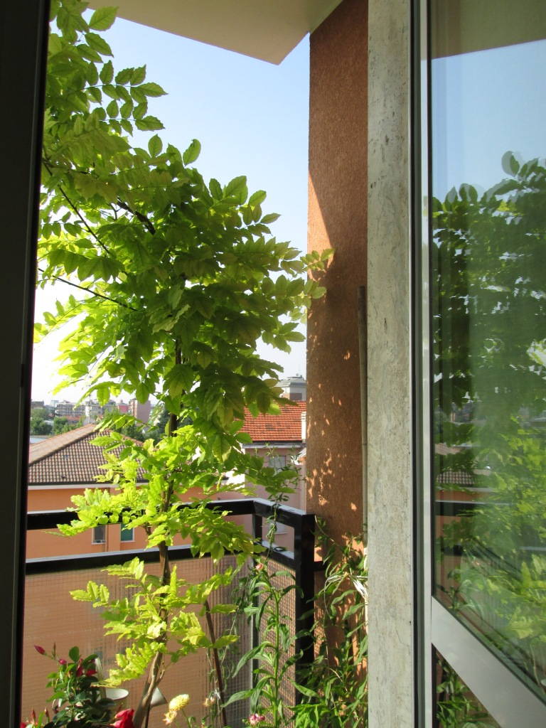 finestra sul balcone